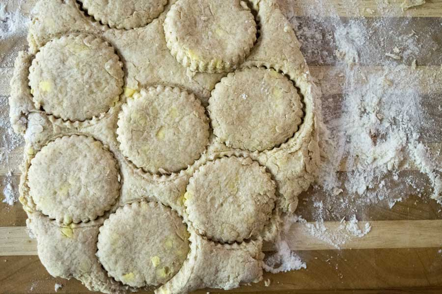 Cut Out Biscuits- Vegan Biscuit a a great alternative to this old standby. Honestly, they are just as flakey as a real biscuit! | The Hungry Waitress