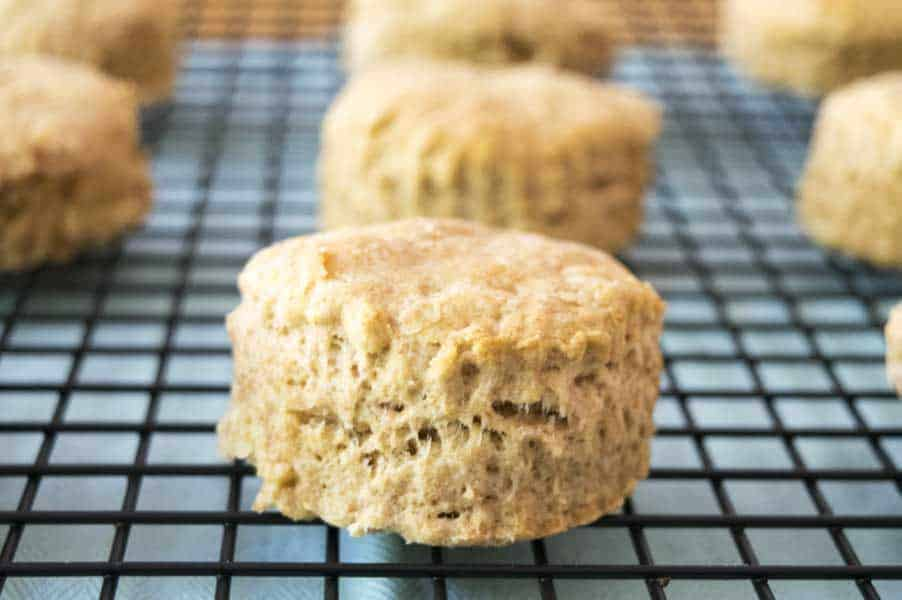 Vegan Biscuit a a great alternative to this old standby. Honestly, they are just as flakey as a real biscuit! | The Hungry Waitress